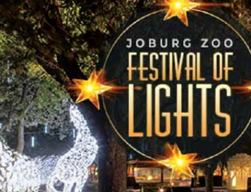 Festival of Lights Returns