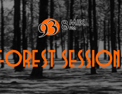 Forest Sessions